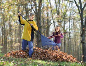 Children raking leaves